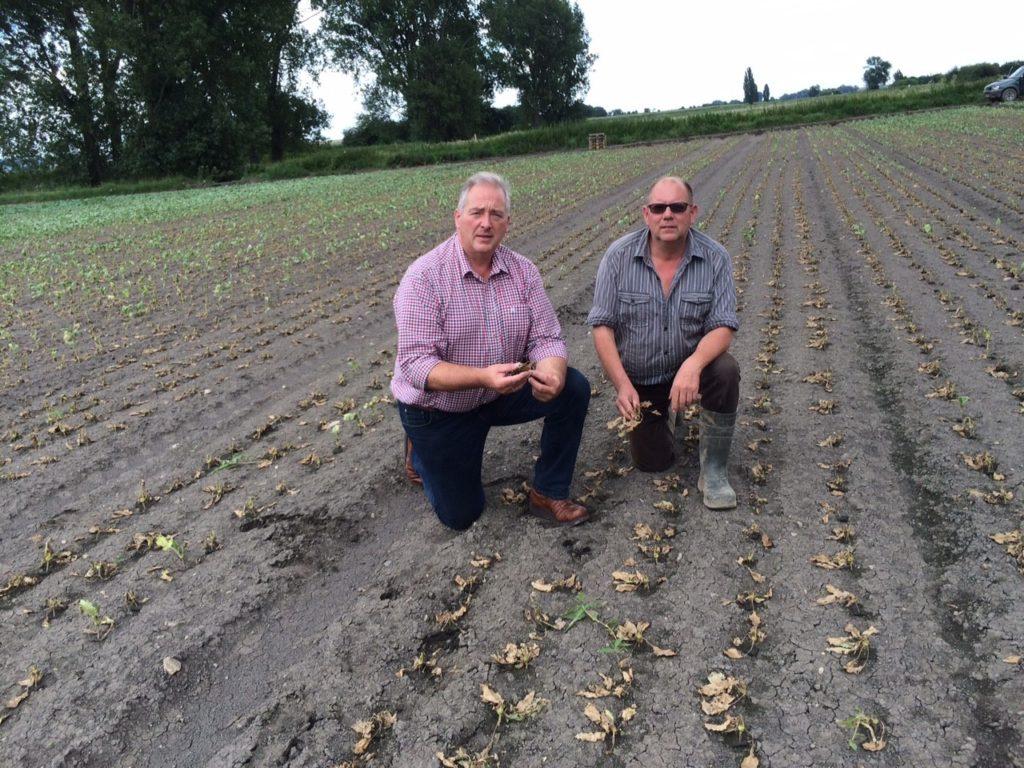 Unser Bild zeigt Frank Oesterhelweg (links) und Helmut Grabenhorst bei der Begutachtung von Hochwasserschäden.
